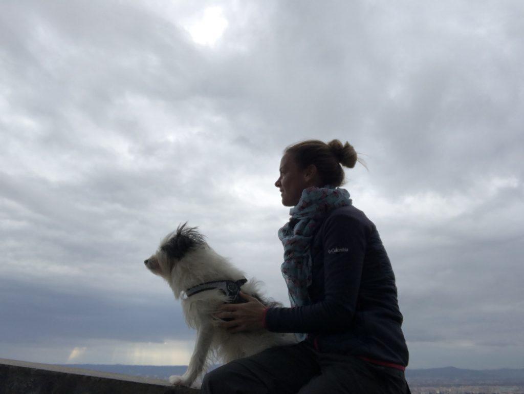 a spasso con il cane a fiesole