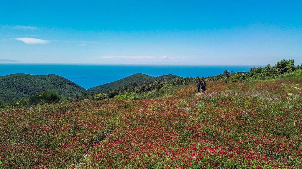 trekking calafuria