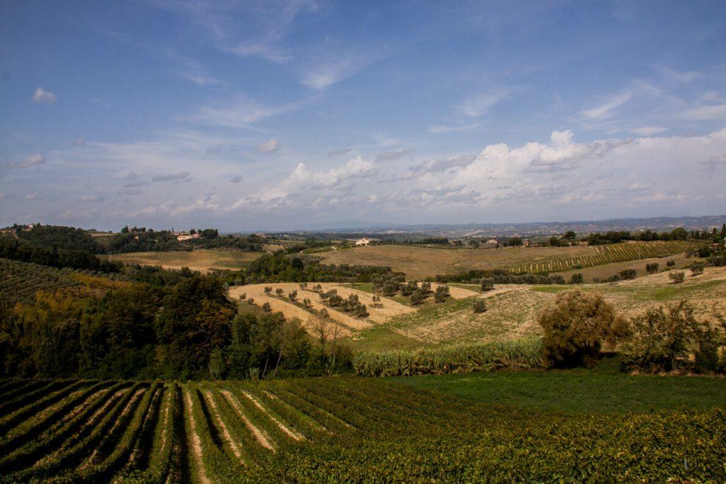 vigne toscana ecoturismo